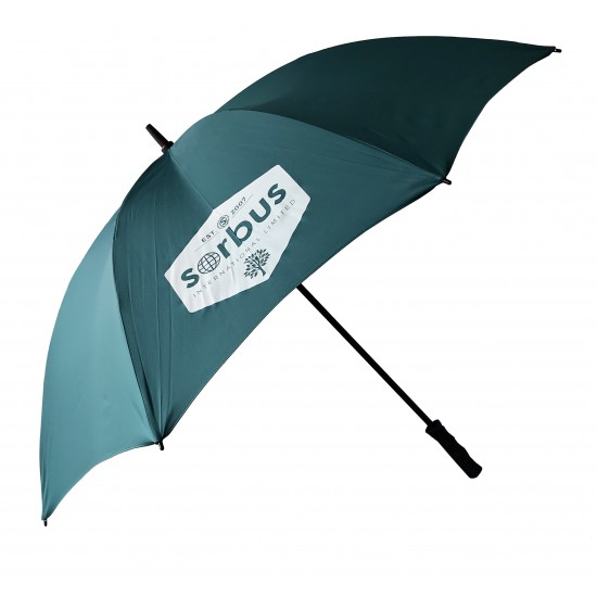 Sorbus Umbrella - Teal