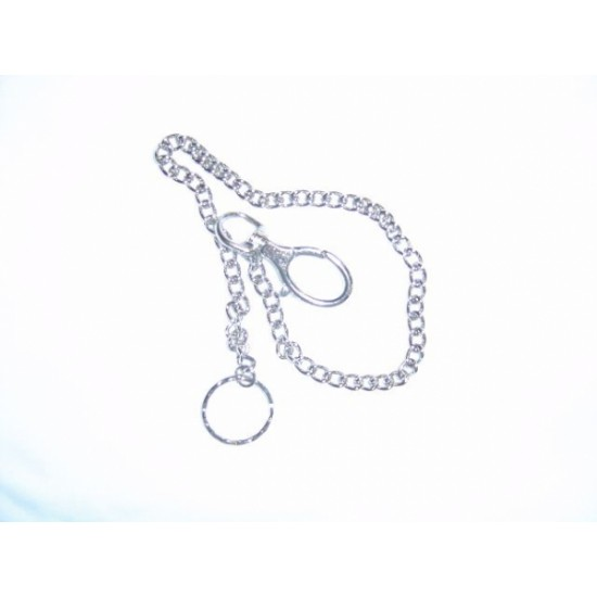 Chain for whistle