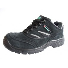 Dual Density Shoe
