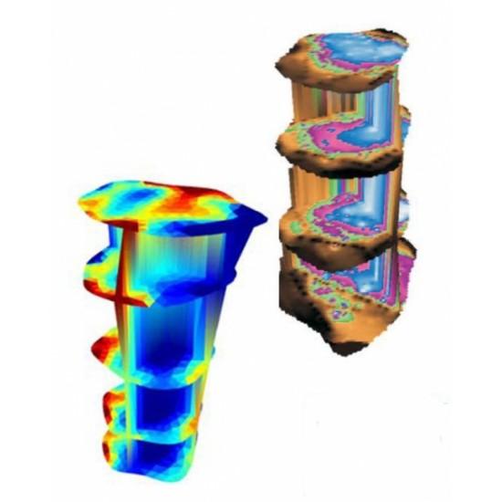 Picus 3D Pro Software