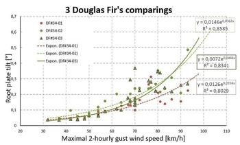 Douglas fir comparing