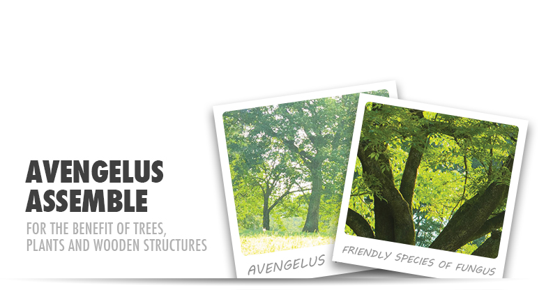 Avengelus Blog Header